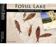 Fossil Lake, The Common Fishes